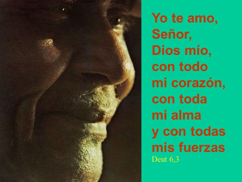Yo te amo, Señor, Dios mío, con todo mi corazón, con toda mi alma