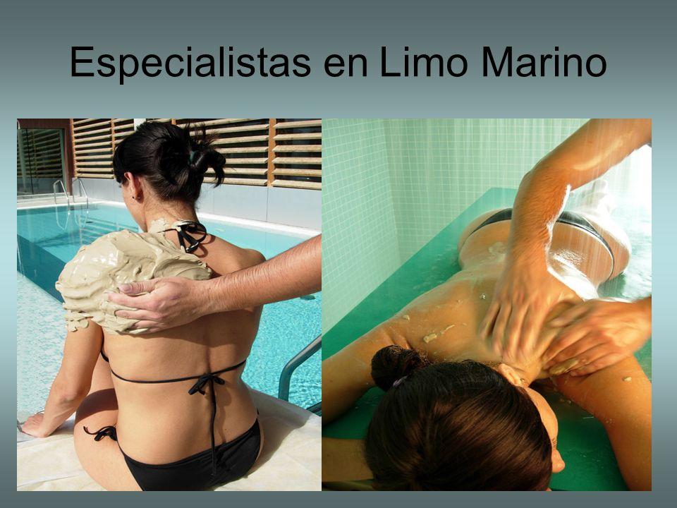Especialistas en Limo Marino
