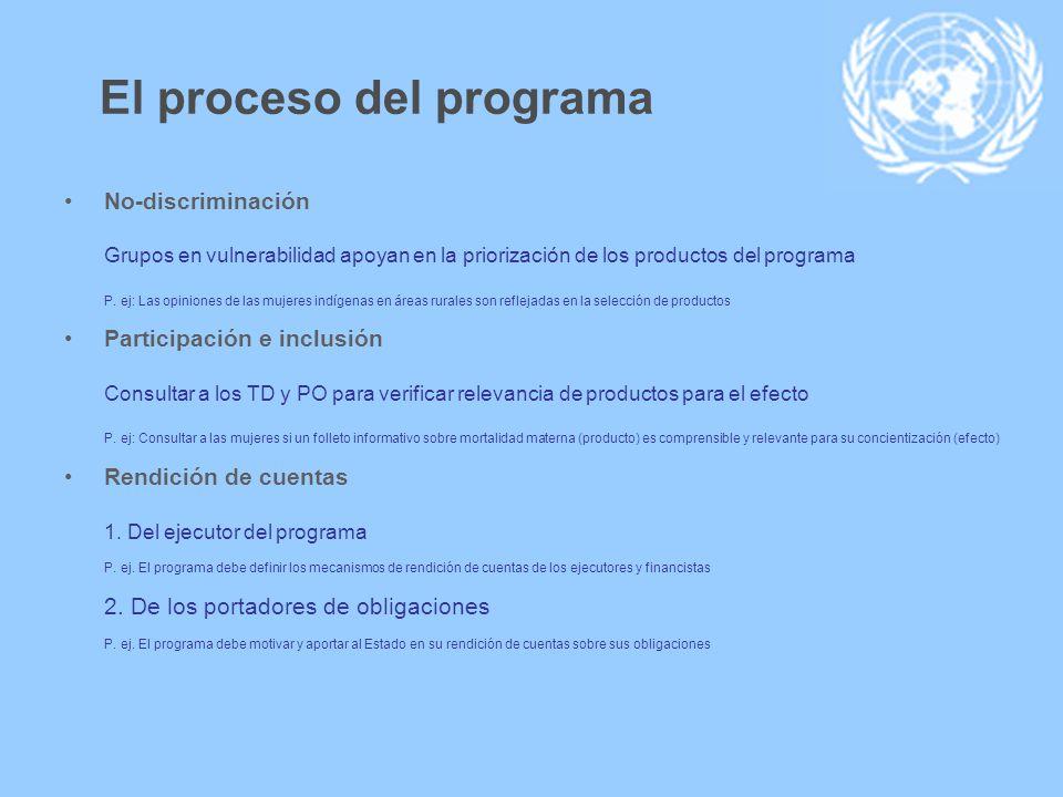 El proceso del programa