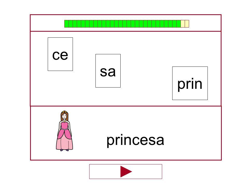 ce sa prin princesa …
