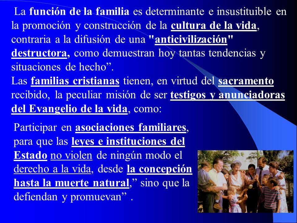 La función de la familia es determinante e insustituible en la promoción y construcción de la cultura de la vida, contraria a la difusión de una anticivilización destructora, como demuestran hoy tantas tendencias y situaciones de hecho .