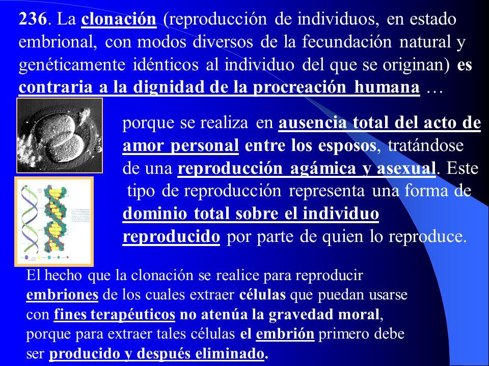 236. La clonación (reproducción de individuos, en estado embrional, con modos diversos de la fecundación natural y genéticamente idénticos al individuo del que se originan) es contraria a la dignidad de la procreación humana …
