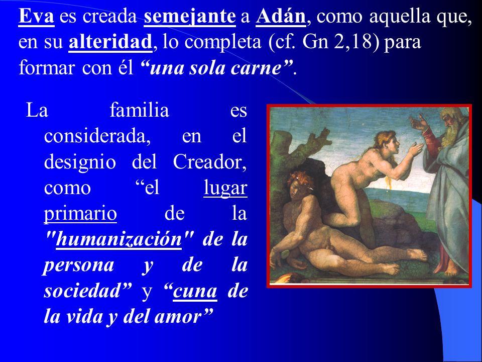 Eva es creada semejante a Adán, como aquella que, en su alteridad, lo completa (cf. Gn 2,18) para formar con él una sola carne .