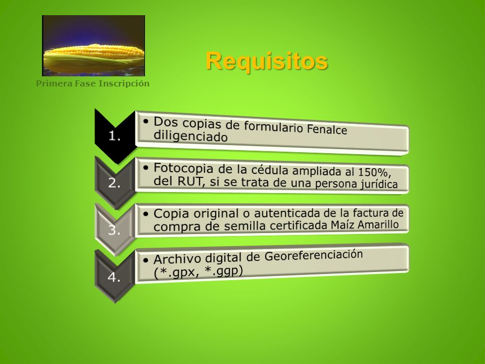 Requisitos Primera Fase Inscripción