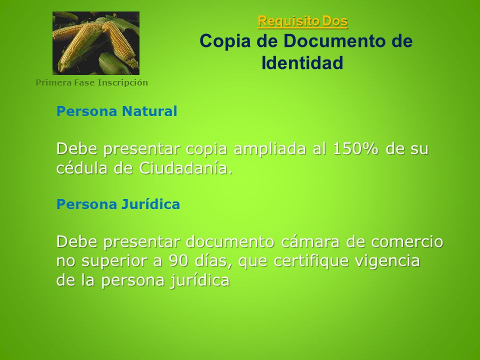 Requisito Dos Copia de Documento de Identidad