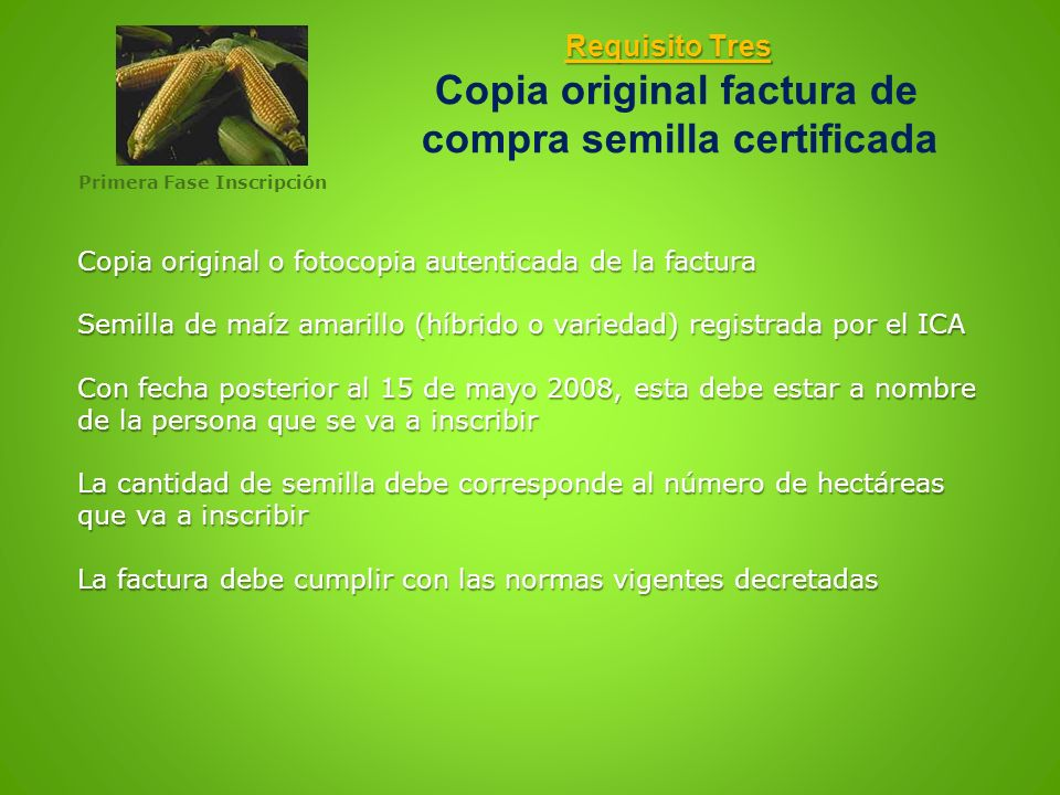 Requisito Tres Copia original factura de compra semilla certificada
