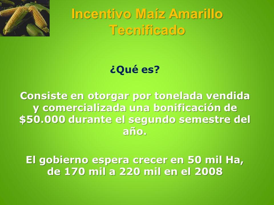 Incentivo Maíz Amarillo Tecnificado