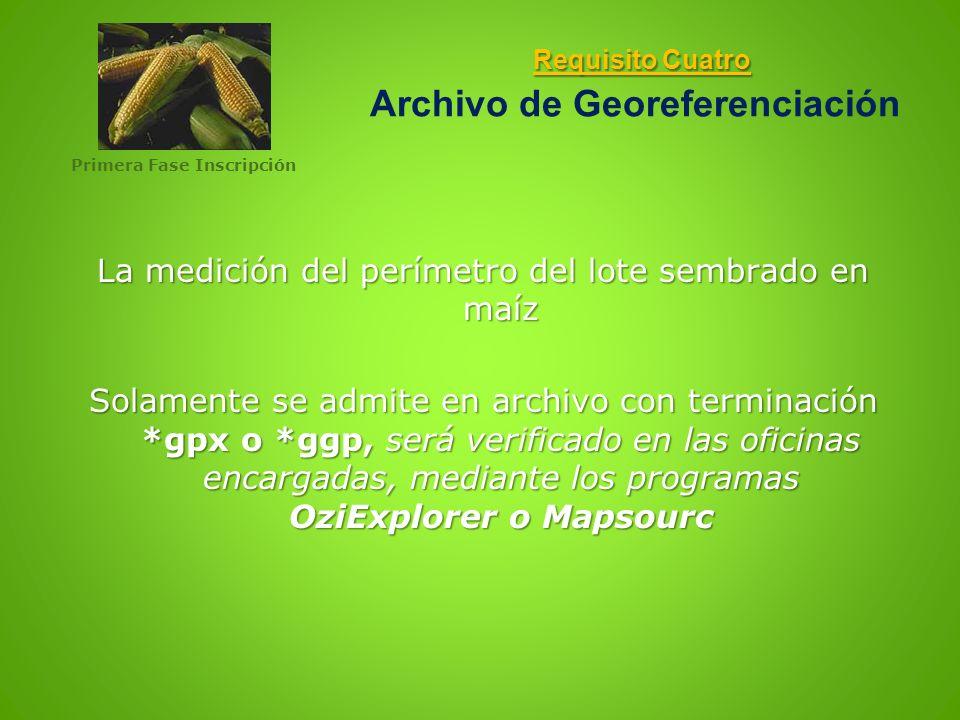 Requisito Cuatro Archivo de Georeferenciación