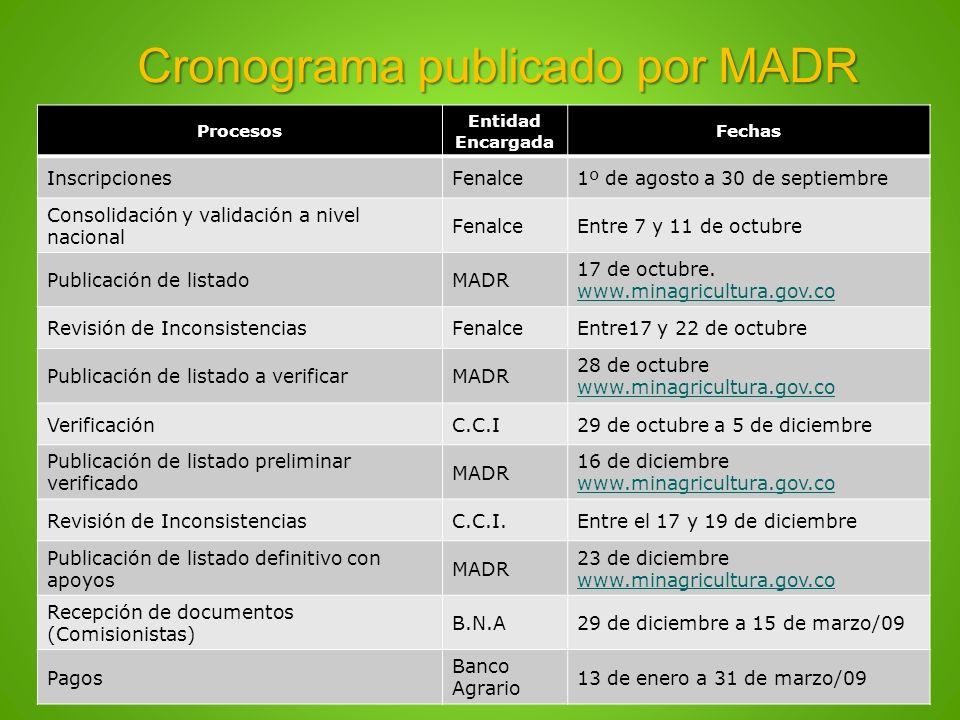 Cronograma publicado por MADR