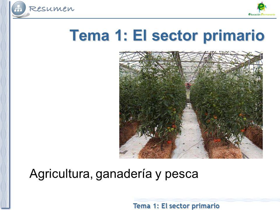Tema 1: El sector primario