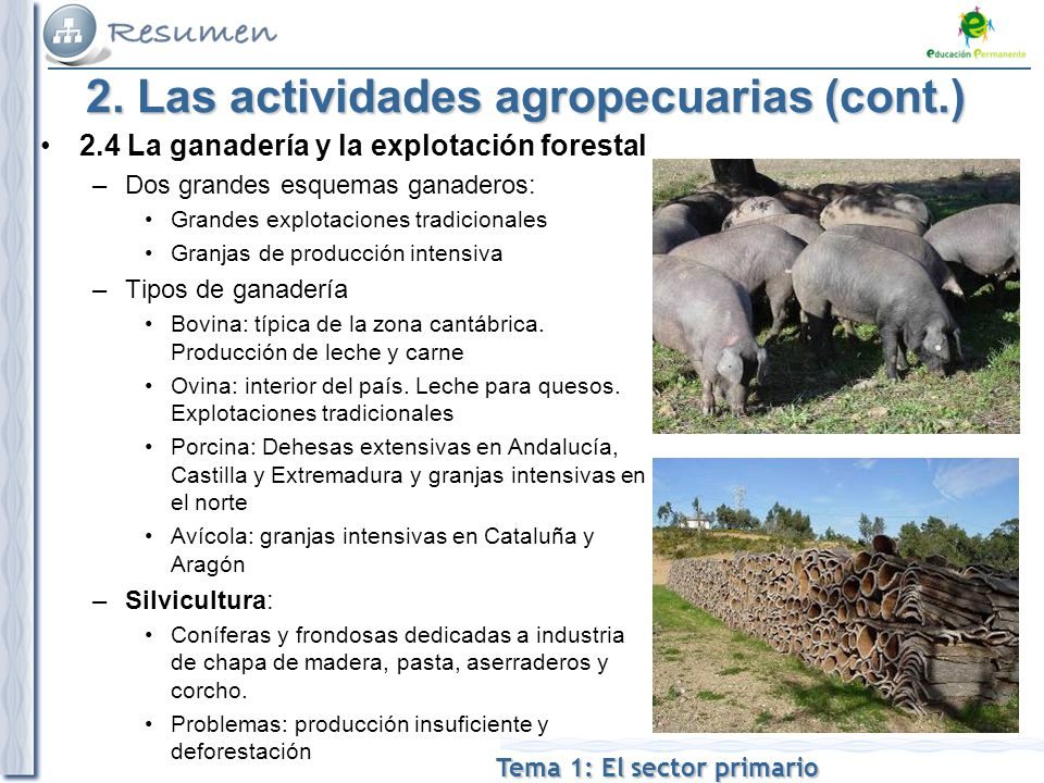 2. Las actividades agropecuarias (cont.)