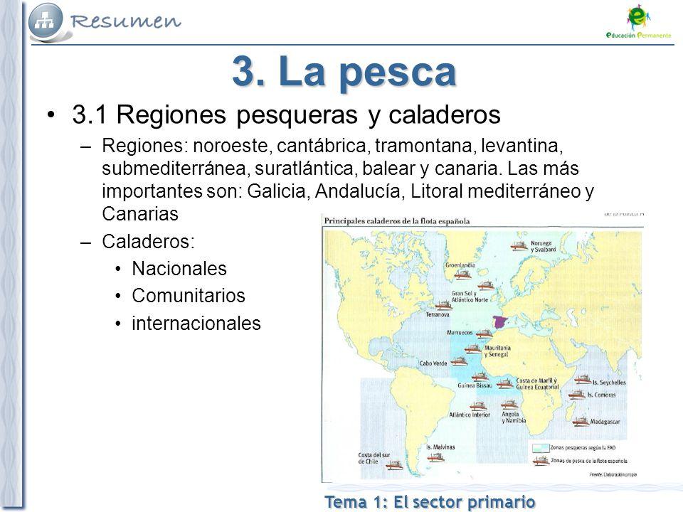 3. La pesca 3.1 Regiones pesqueras y caladeros