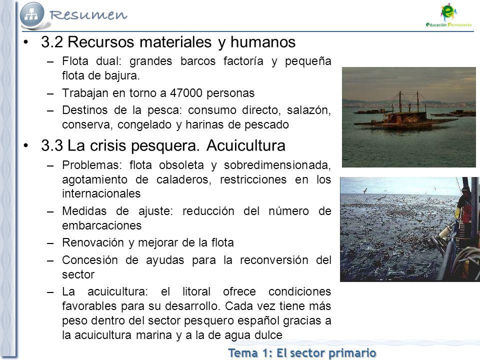 3.2 Recursos materiales y humanos