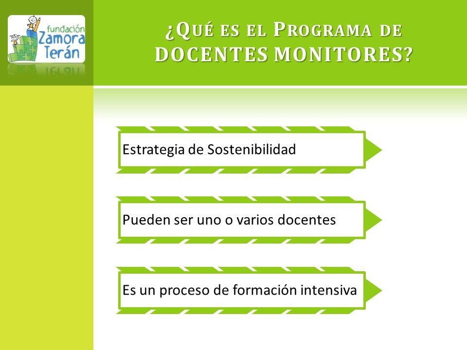 ¿Qué es el Programa de DOCENTES MONITORES