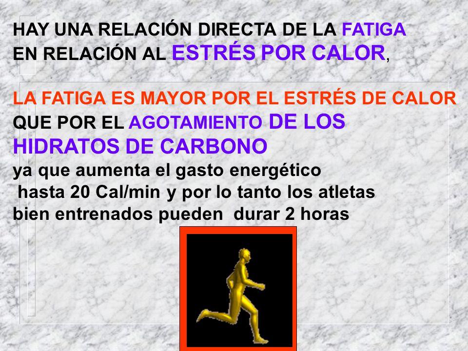 HIDRATOS DE CARBONO HAY UNA RELACIÓN DIRECTA DE LA FATIGA
