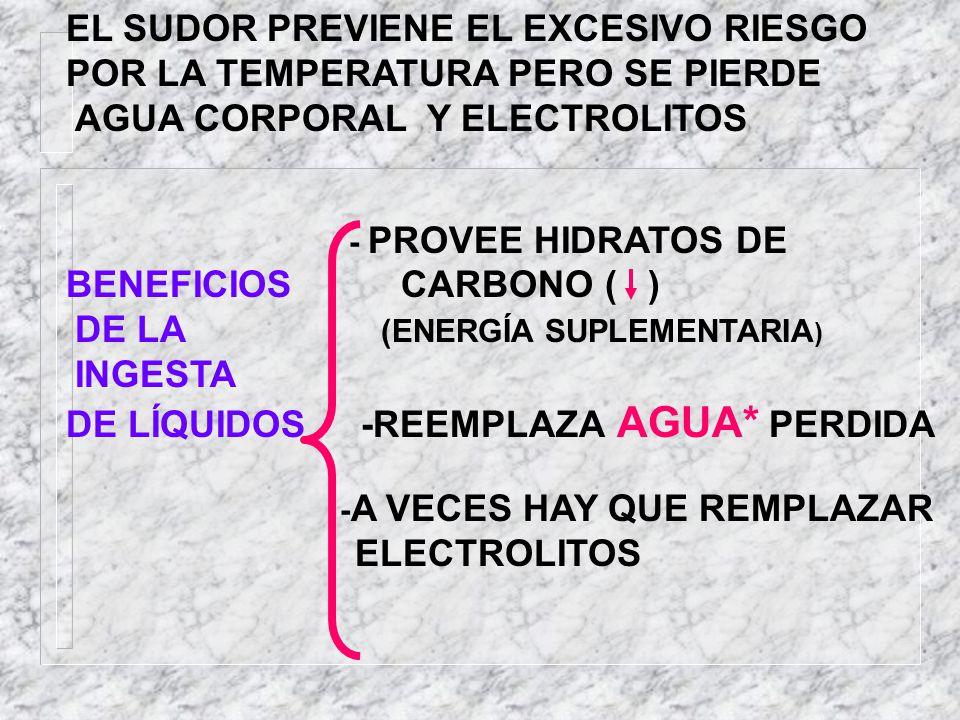 EL SUDOR PREVIENE EL EXCESIVO RIESGO POR LA TEMPERATURA PERO SE PIERDE
