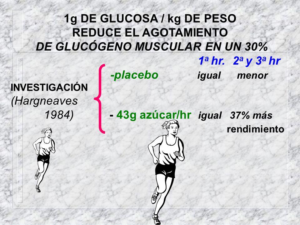 DE GLUCÓGENO MUSCULAR EN UN 30%