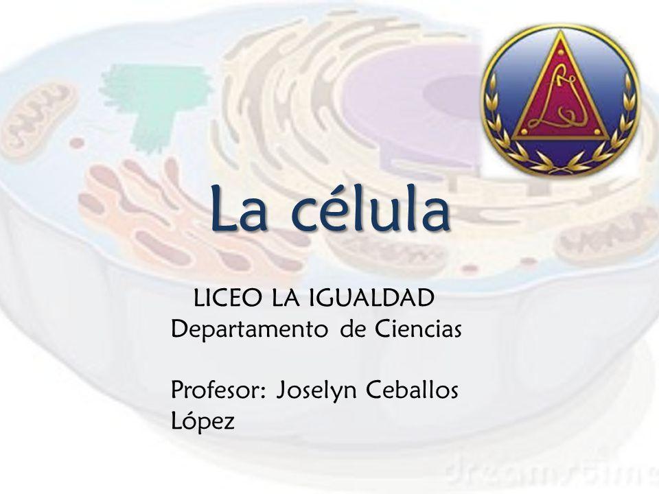 La célula LICEO LA IGUALDAD Departamento de Ciencias