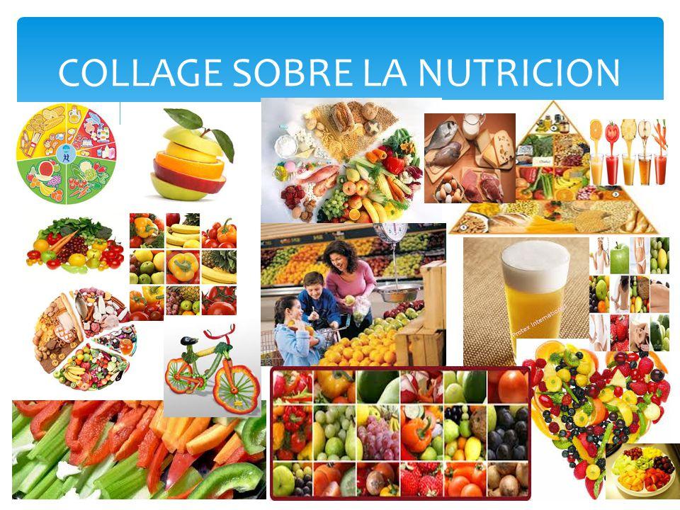 LA NUTRICION Ilse Berenice Rodríguez Jasso Producción I