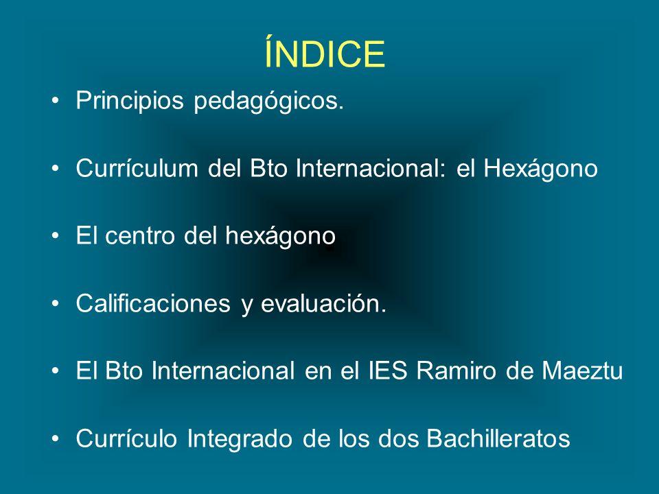 ÍNDICE Principios pedagógicos.