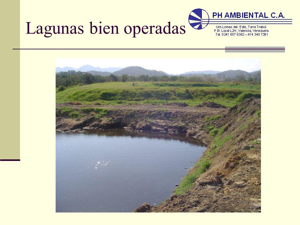 Leyenda de la laguna de paca mitos leyendas de jun n of Estanques para cachamas
