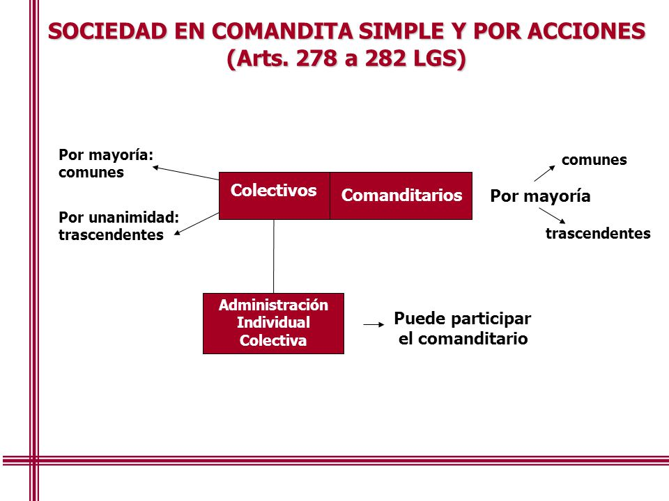 SOCIEDAD EN COMANDITA SIMPLE Y POR ACCIONES