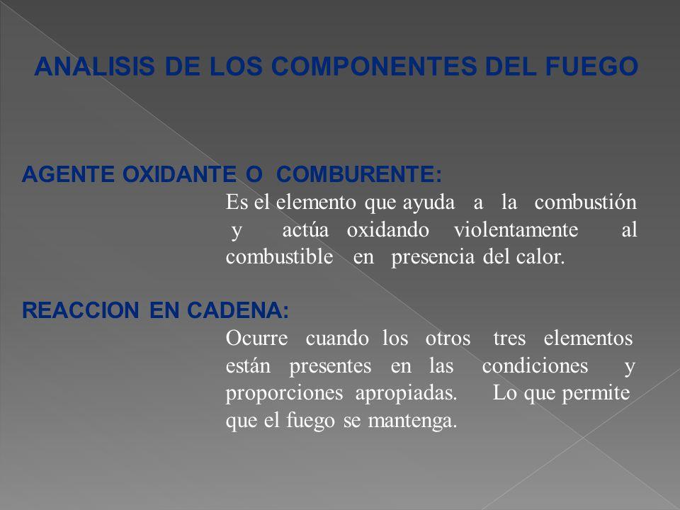 ANALISIS DE LOS COMPONENTES DEL FUEGO