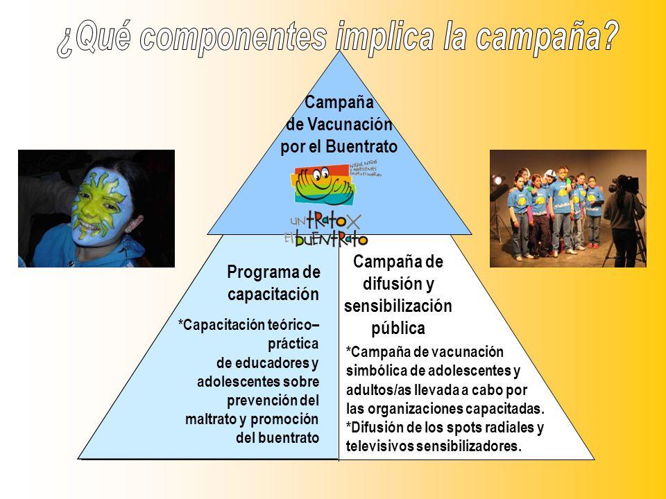 ¿Qué componentes implica la campaña