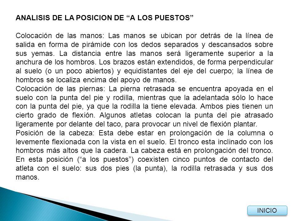 ANALISIS DE LA POSICION DE A LOS PUESTOS