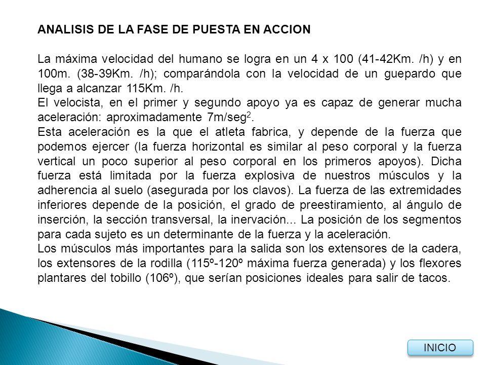 ANALISIS DE LA FASE DE PUESTA EN ACCION