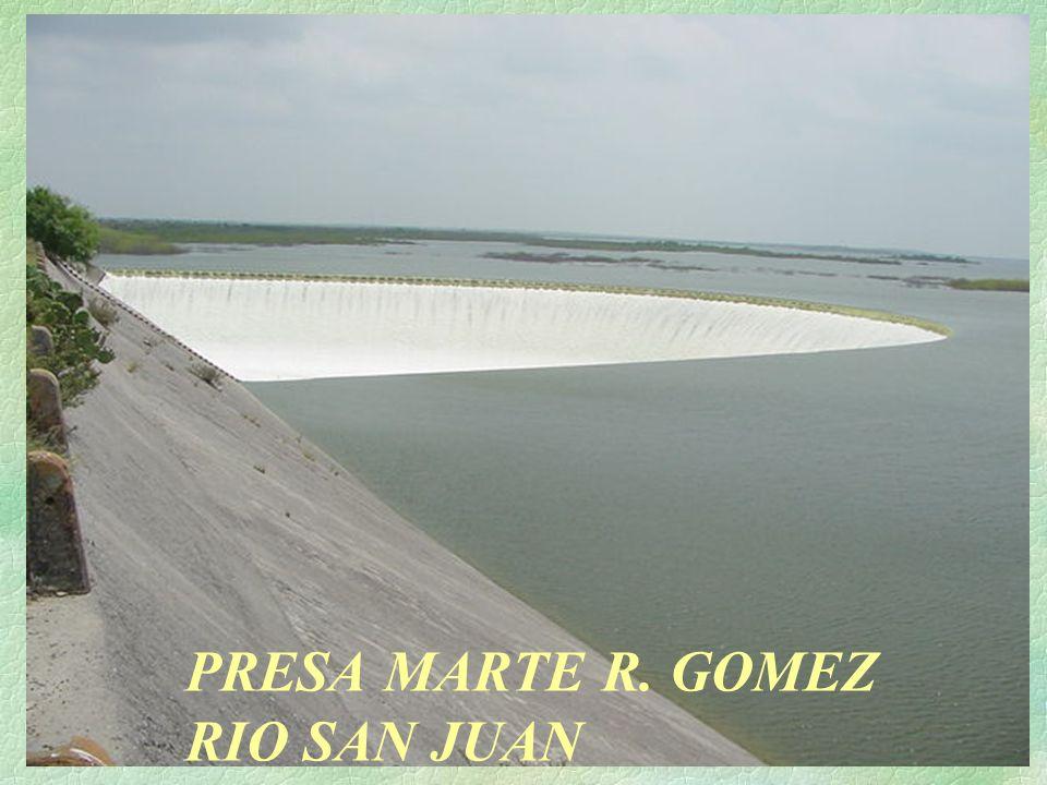 PRESA MARTE R. GOMEZ RIO SAN JUAN