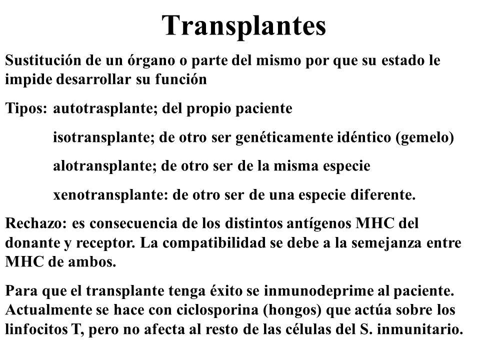Transplantes Sustitución de un órgano o parte del mismo por que su estado le impide desarrollar su función.