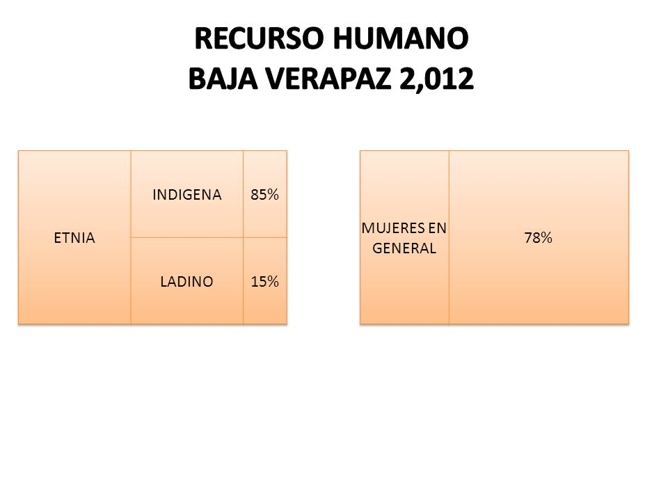 RECURSO HUMANO BAJA VERAPAZ 2,012