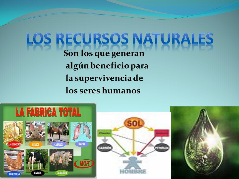 Temas recursos naturales reas protegidas desarrollo - Aromatizantes naturales para la casa ...