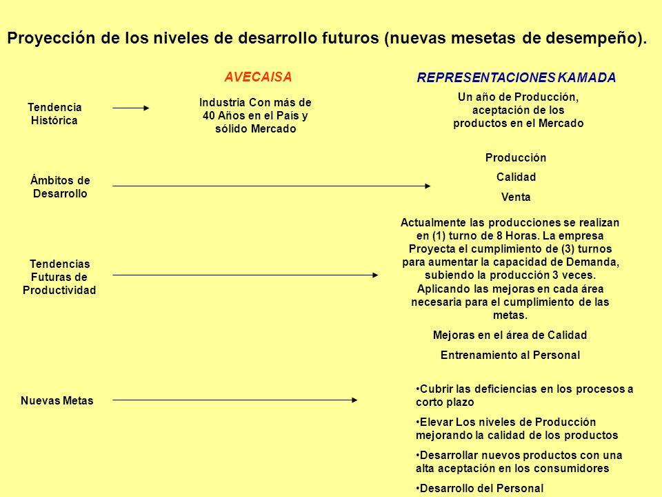Proyección de los niveles de desarrollo futuros (nuevas mesetas de desempeño).