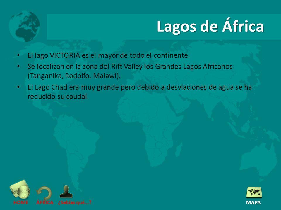 Lagos de África El lago VICTORIA es el mayor de todo el continente.