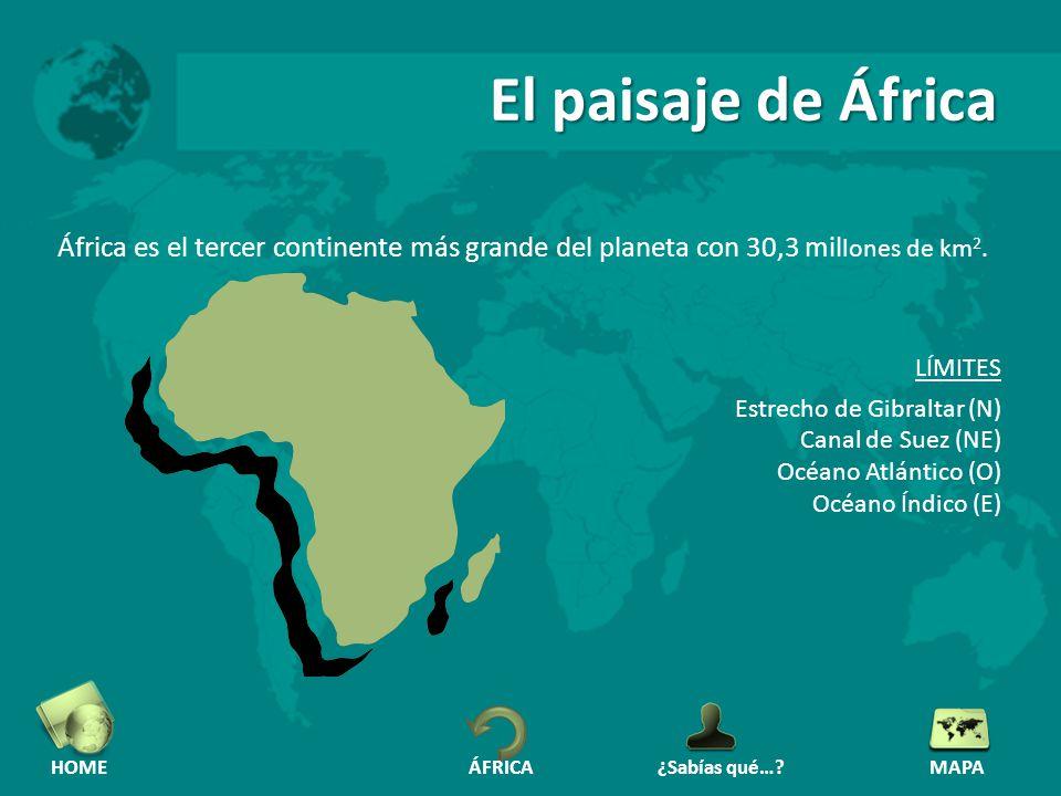 El paisaje de África África es el tercer continente más grande del planeta con 30,3 millones de km2.