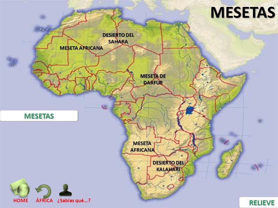MESETAS MESETAS RELIEVE DESIERTO DEL SAHARA MESETA AFRICANA