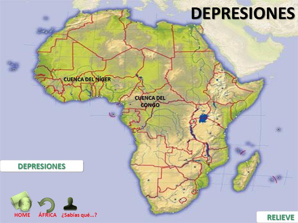 DEPRESIONES DEPRESIONES RELIEVE CUENCA DEL NÍGER CUENCA DEL CONGO HOME