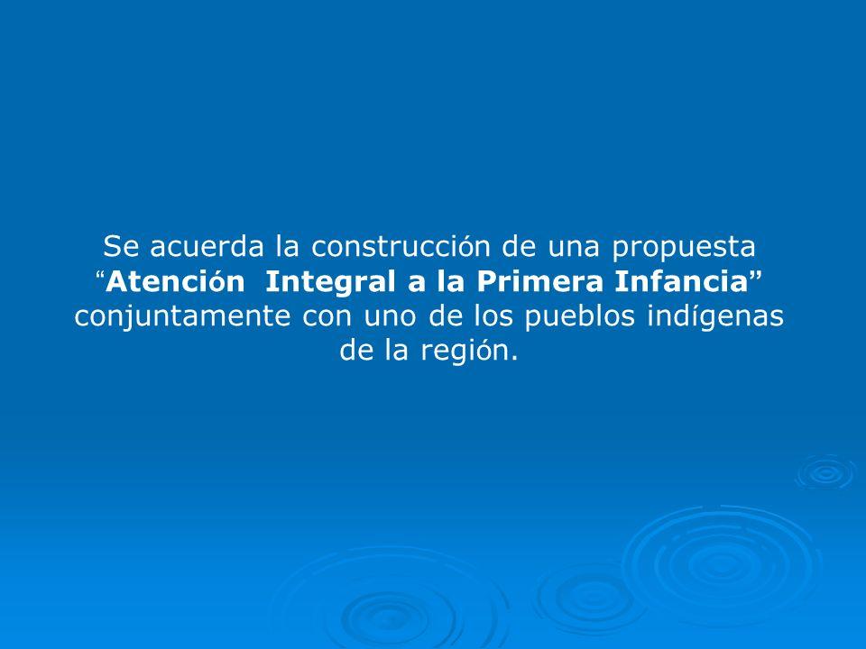 Se acuerda la construcción de una propuesta Atención Integral a la Primera Infancia conjuntamente con uno de los pueblos indígenas de la región.