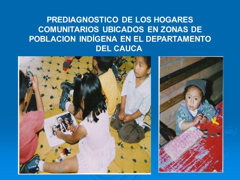 PREDIAGNOSTICO DE LOS HOGARES COMUNITARIOS UBICADOS EN ZONAS DE POBLACION INDÍGENA EN EL DEPARTAMENTO DEL CAUCA