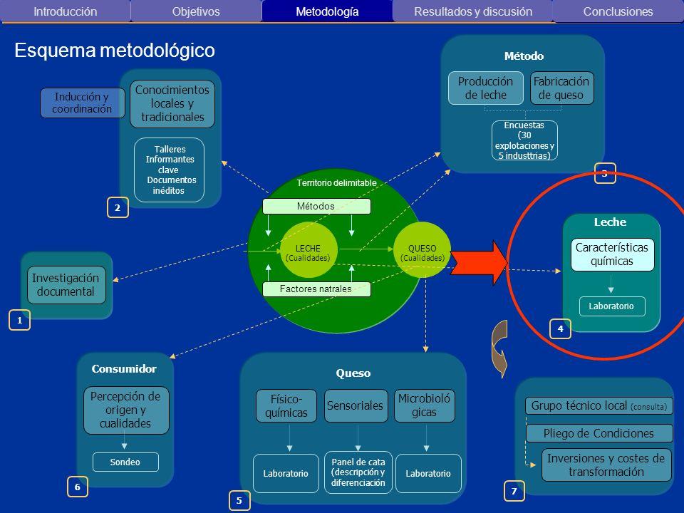 Esquema metodológico Introducción Objetivos Metodología