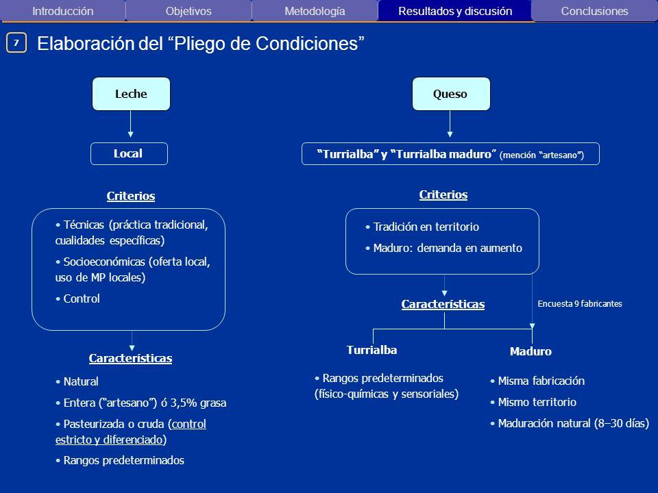 Elaboración del Pliego de Condiciones