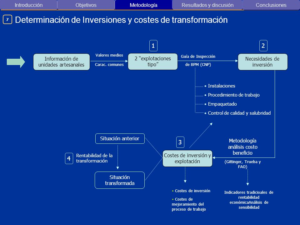 Determinación de Inversiones y costes de transformación
