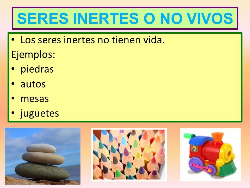 SERES INERTES O NO VIVOS