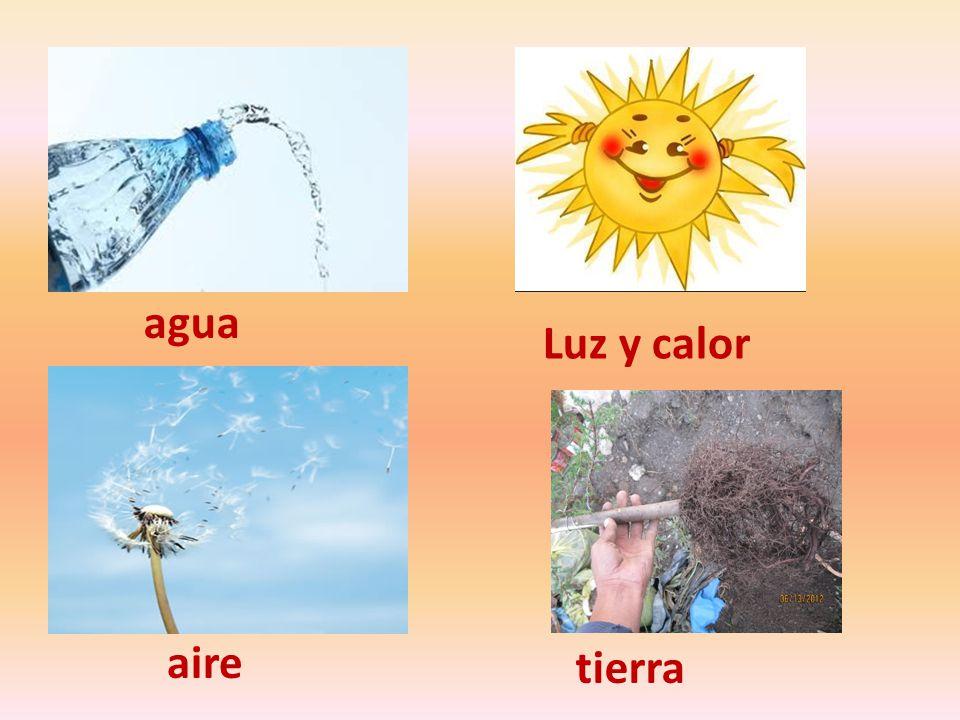 agua Luz y calor aire tierra