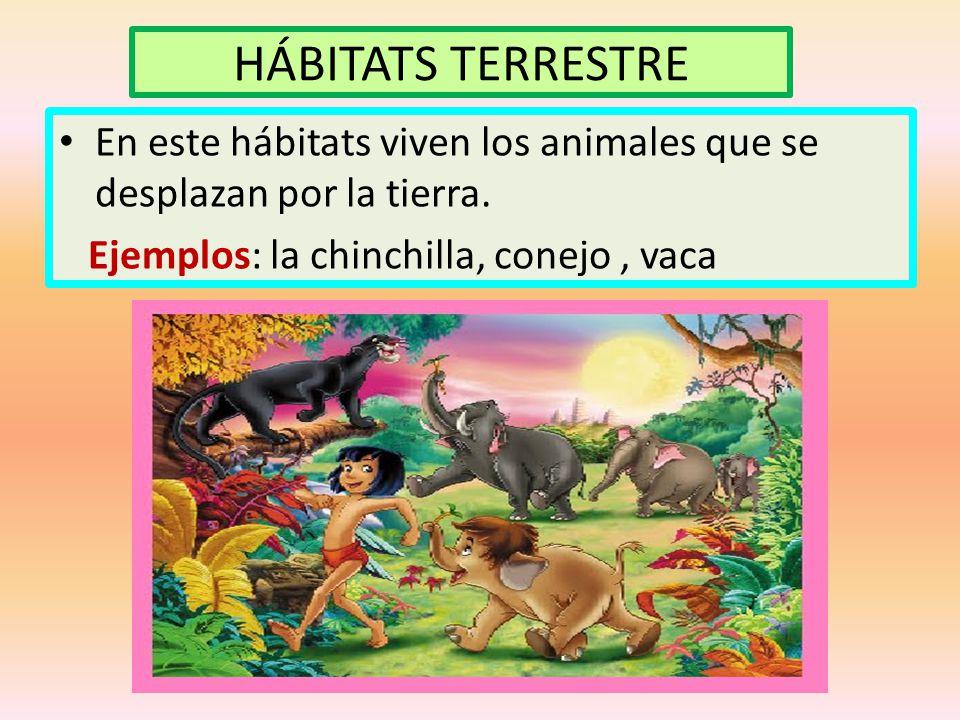 HÁBITATS TERRESTRE En este hábitats viven los animales que se desplazan por la tierra.