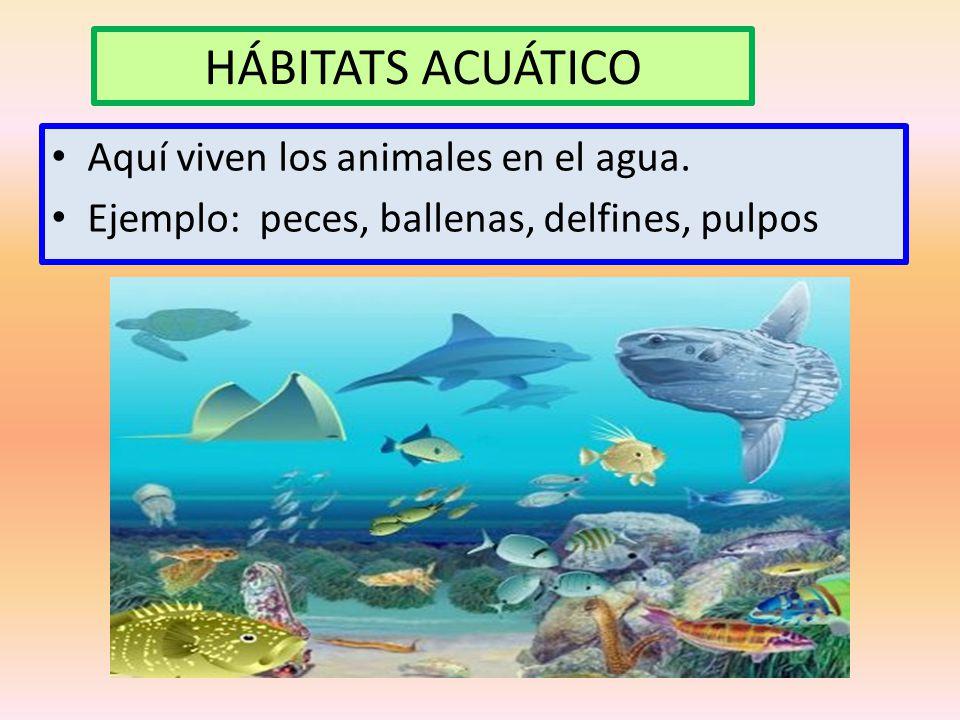 HÁBITATS ACUÁTICO Aquí viven los animales en el agua.