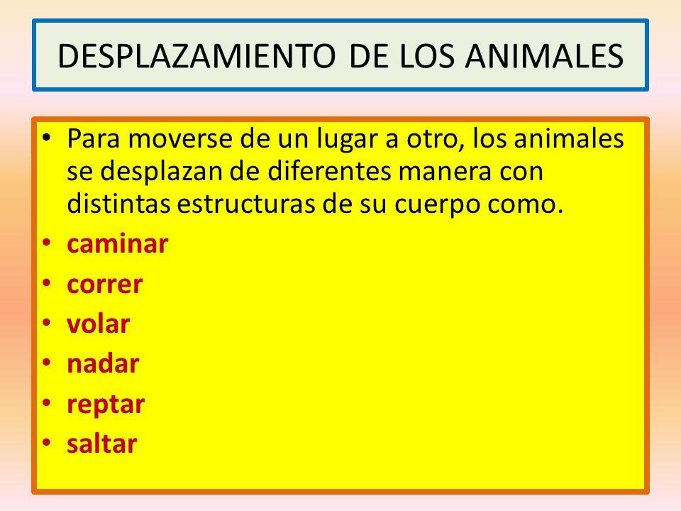 DESPLAZAMIENTO DE LOS ANIMALES