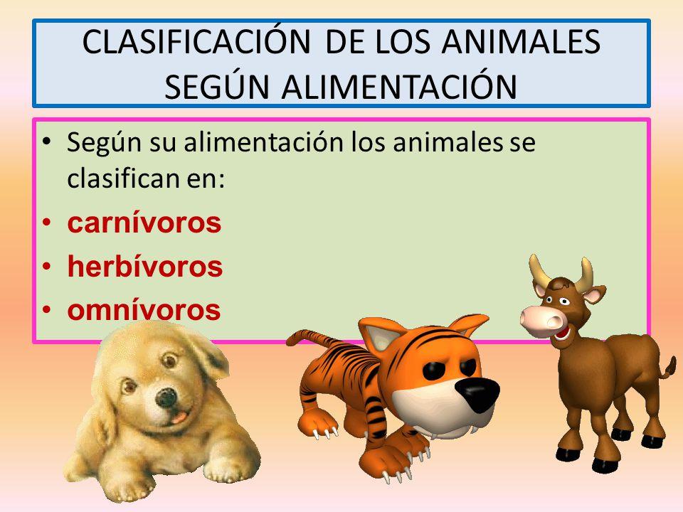 CLASIFICACIÓN DE LOS ANIMALES SEGÚN ALIMENTACIÓN